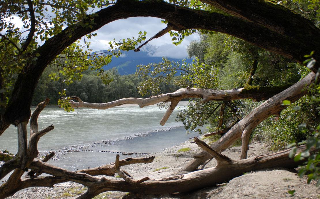 Schutzgebietsbetreuung - Karnebitter Innau - © Vorauer